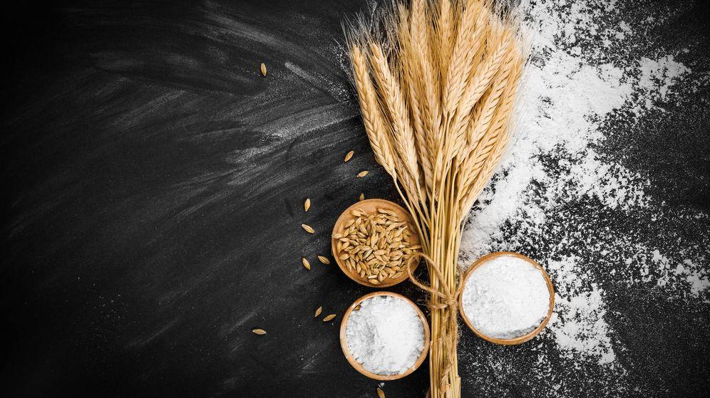 nutrición trigo el alimento milenario lleno de energía y