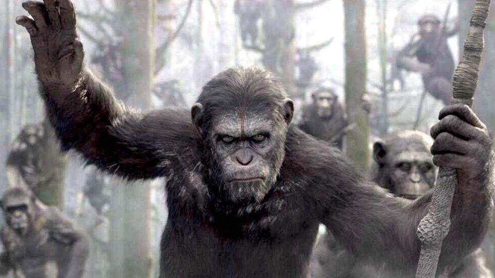 Foto: Fotograma de 'El amanecer del planeta de los simios'