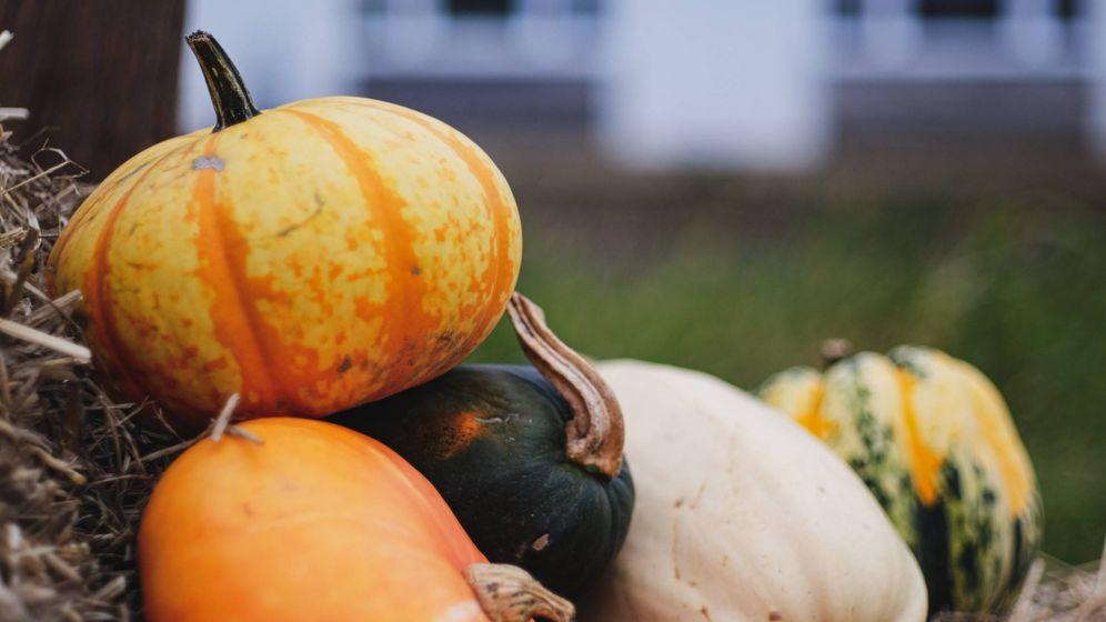 Foto: Alimentos de otoño para adelgazar. (Christophe Dion para Unsplash)