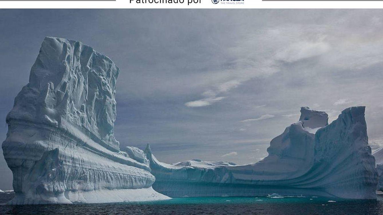 Experiencias por el mundo: Kamchatka, tigres en Ranthambore, Antártida y más