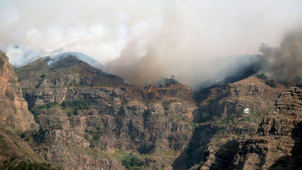 Foto: El fuego del incendio de Gran Canaria entra en el Parque Natural de Tamadaba. (EFE)