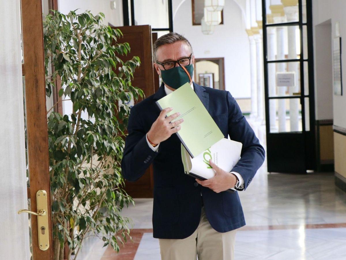 Foto: Manuel Gavira, portavoz parlamentario de Vox en Andalucía. (EFE)