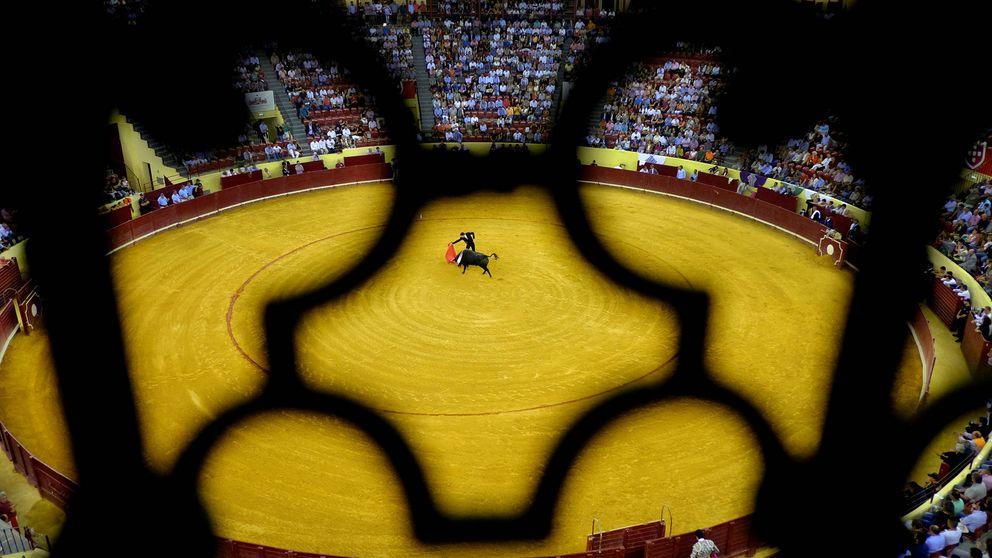 Portugal debate la abolición de las corridas 'light' en las que el toro no muere en la plaza