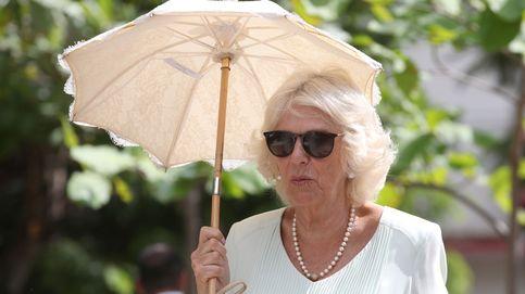 Camilla, a punto de perder la vida: pánico en un helicóptero