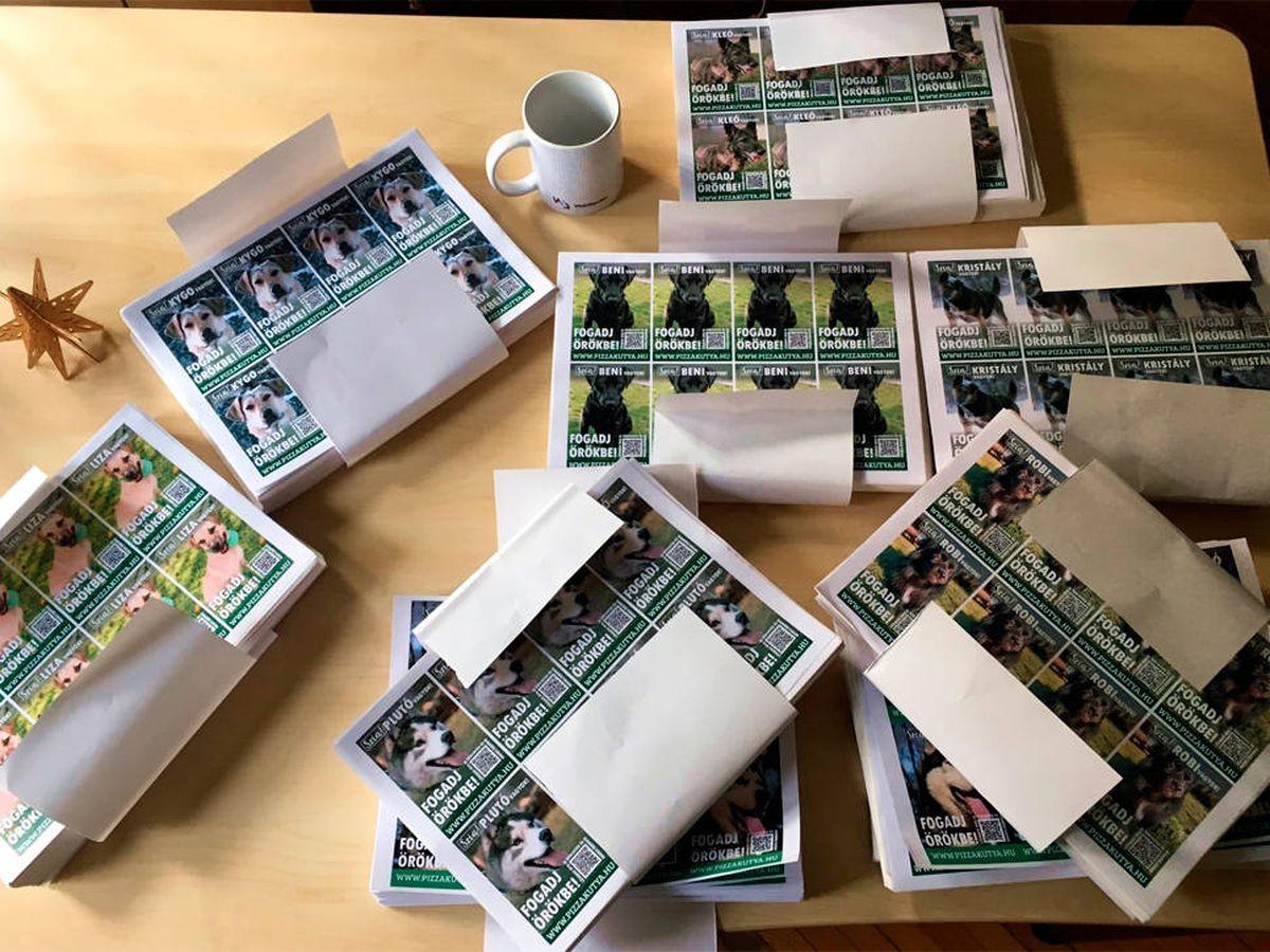 Foto: Colocan una foto en cada caja de pizza con un código QR que les lleva a la ficha del perro (Facebook)