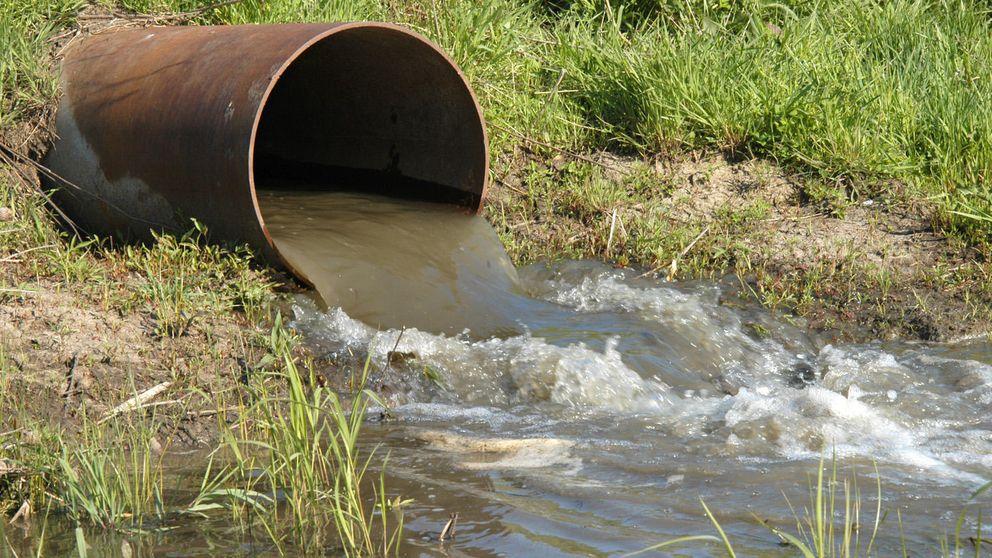Un 'software' español rastrea el origen de la contaminación fecal en el agua
