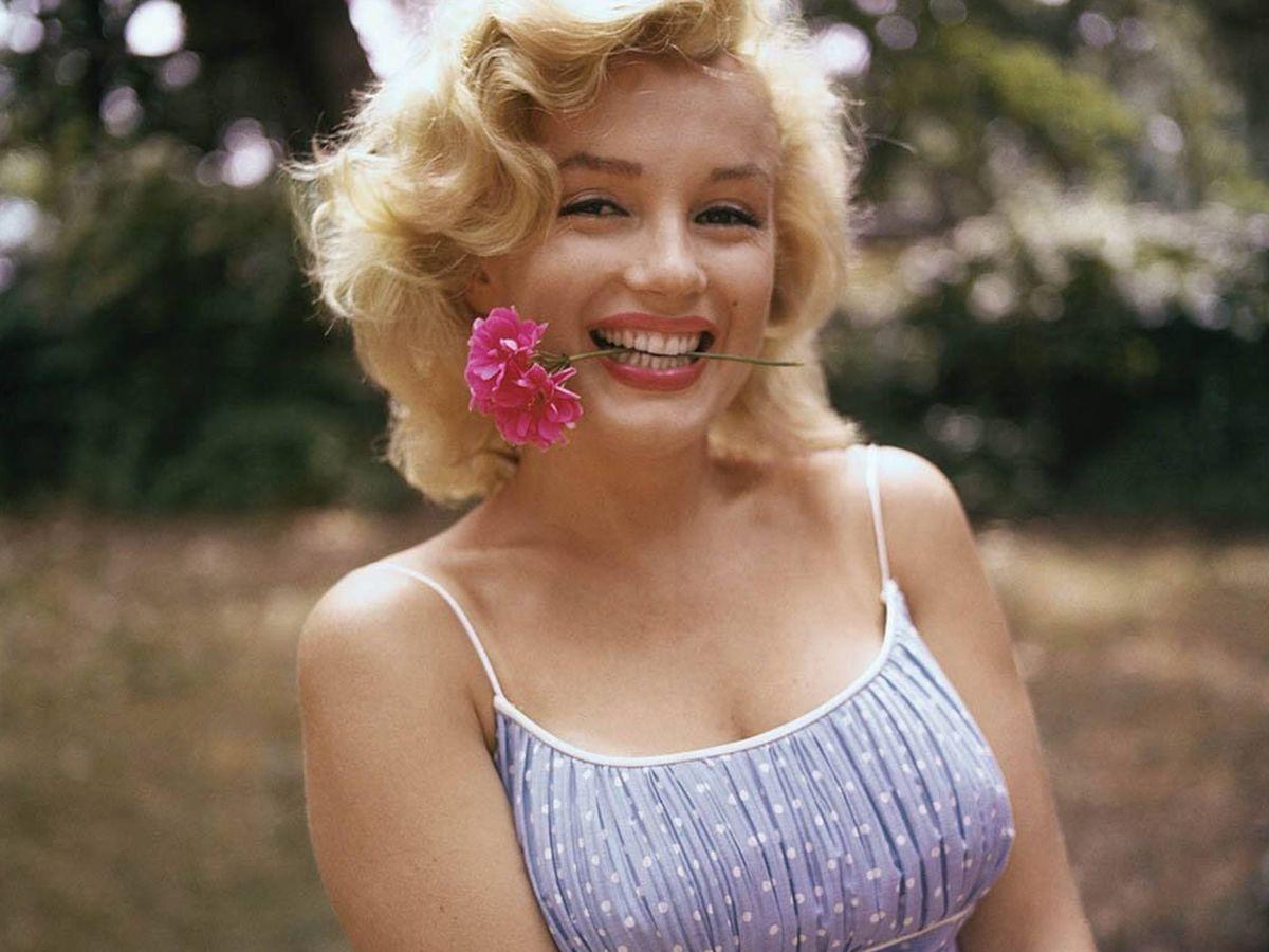 Foto: La belleza de Marilyn Monroe sigue levantando expectación décadas después. (Instagram @marilynmonroe vía @samshawphoto)