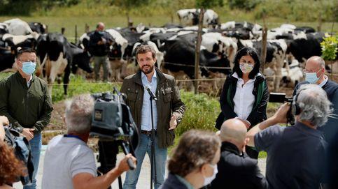 Ofensiva parlamentaria del PP para ahondar en la brecha Garzón-Planas