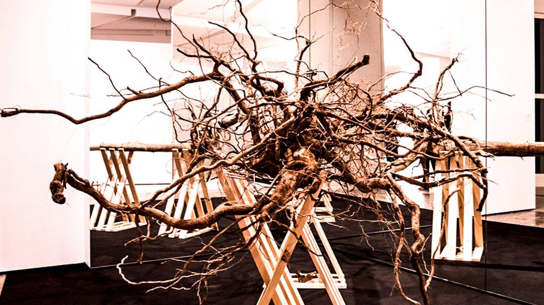 Foto: Imagen de la muestra 'Del árbol a la silla', en el Museo Centro Gaiás de Santiago de Compostela.