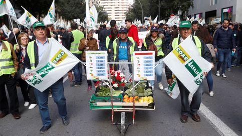 Cientos de agricultores y tractores marchan en Murcia y Mérida y exigen precios justos