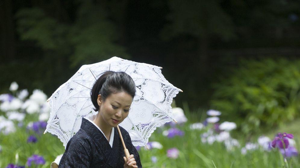 Foto: Vista de las flores de iris en Kamakura. (EFE)