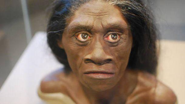 Foto: Reconstrucción de una mujer Homo floresiensis. (Karen Neoh)