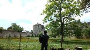 Siempre Montaigne: una visita a la torre donde nació el individuo moderno