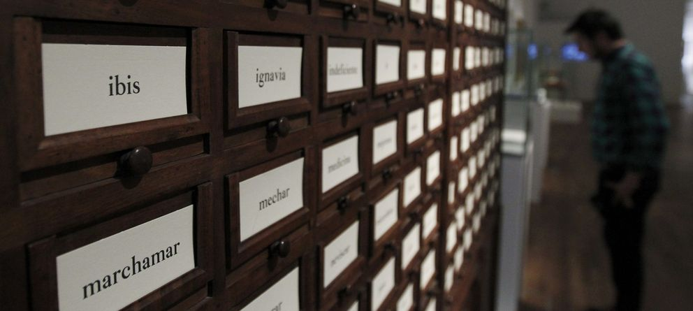 Foto: Imagen de la Biblioteca Nacional (EFE)