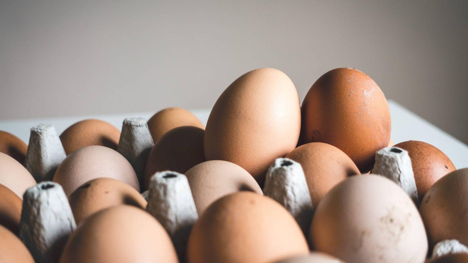 Foto: Los huevos, una de las proteínas más completas.