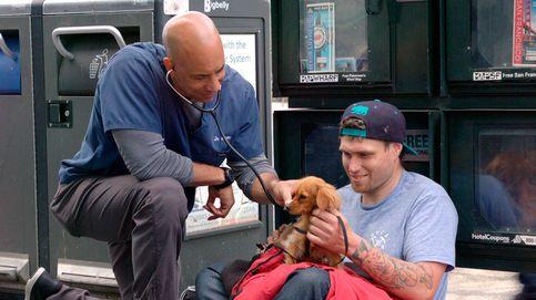 El veterinario callejero, el cuidador gratuito de las mascotas de los sin hogar