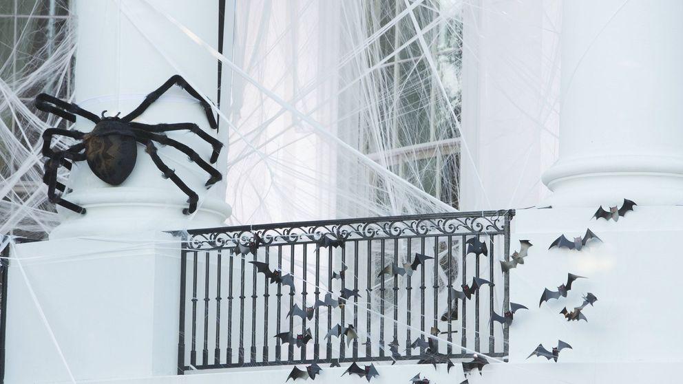 ¿Fiesta de Halloween en casa? Decora como una experta por poco dinero con Flying Tiger