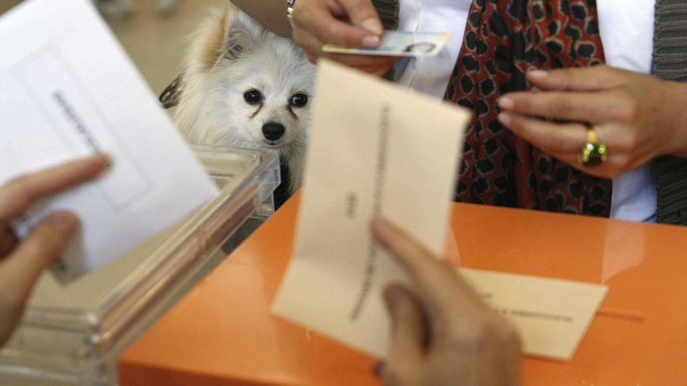 Foto: Desde este miércoles 4 de mayo puedes solicitar el voto por correo (EFE)
