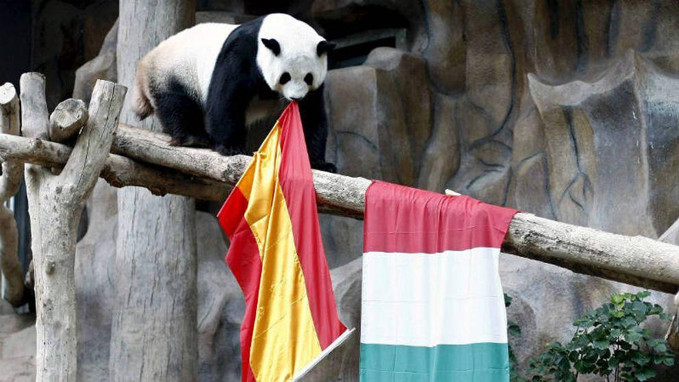 Por qué España no es Italia