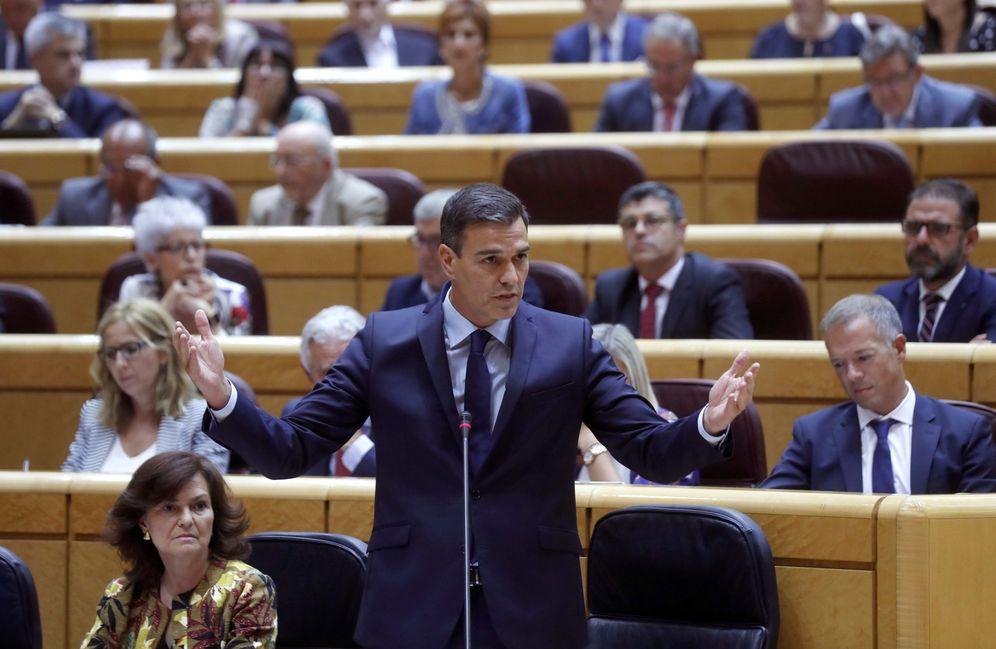 Foto: Pedro Sánchez, durante la sesión de control en el Senado, este 11 de septiembre. (EFE)