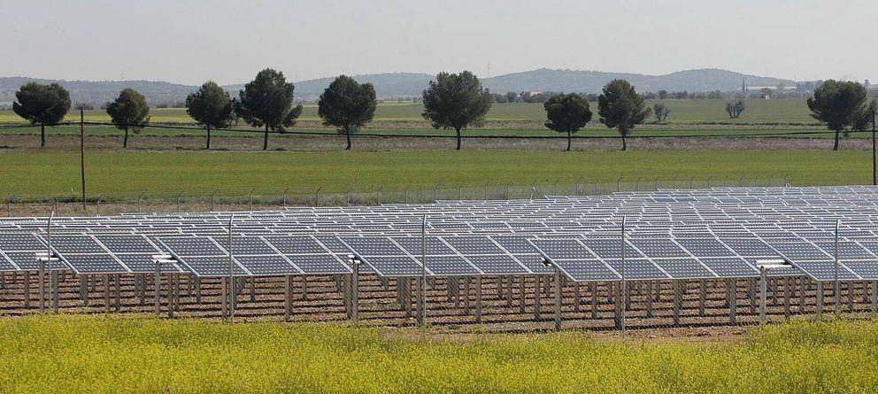 Foto: Placas solares en la provincia de Ciudad Real. (Efe)