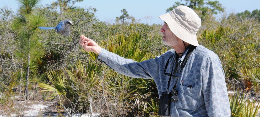 Foto: El entomólogo de la universidad de Standford  Paul Ralph Ehrlich.