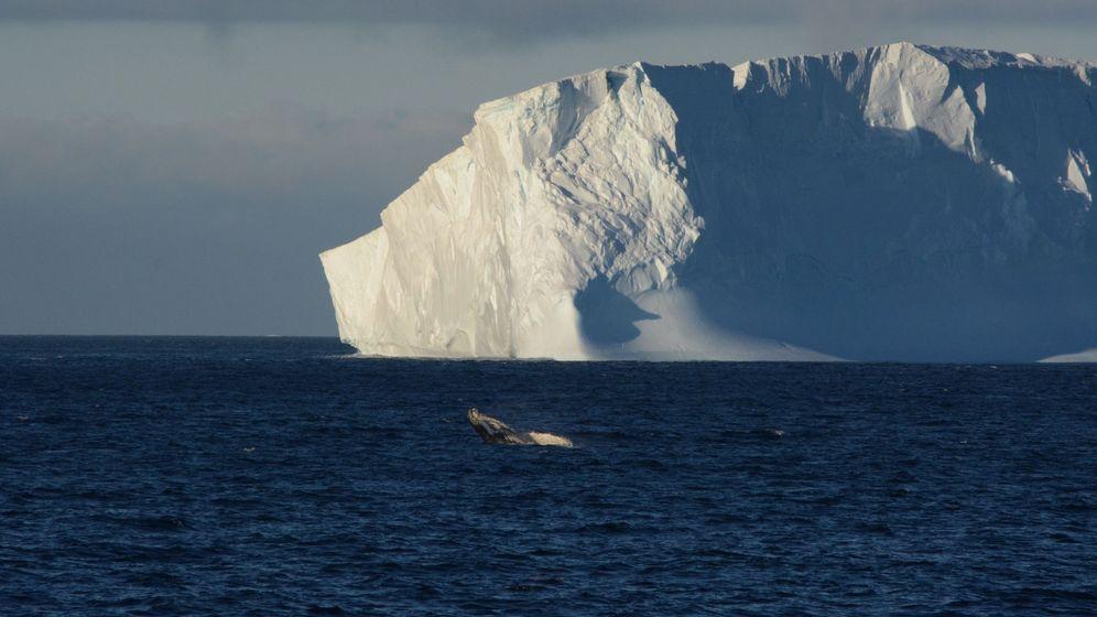 Foto: Sudáfrica planea 'secuestrar' un iceberg para acabar con la sequía. (EFE)
