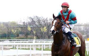 'Mágic' Martínez, el jockey español que sólo gana ya suma 903 victorias