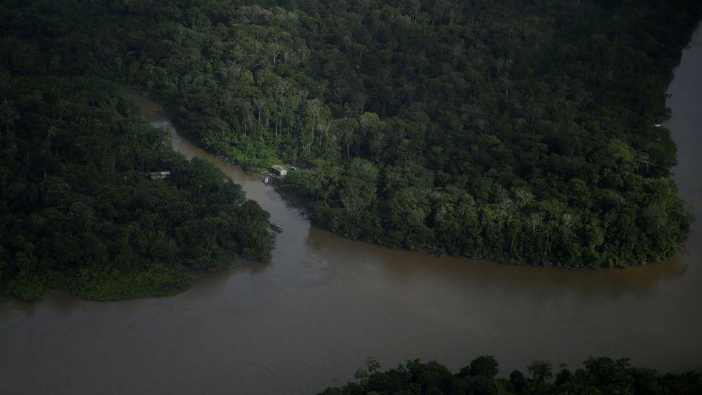 Foto: Una vista aérea del Amazonas. (Reuters)
