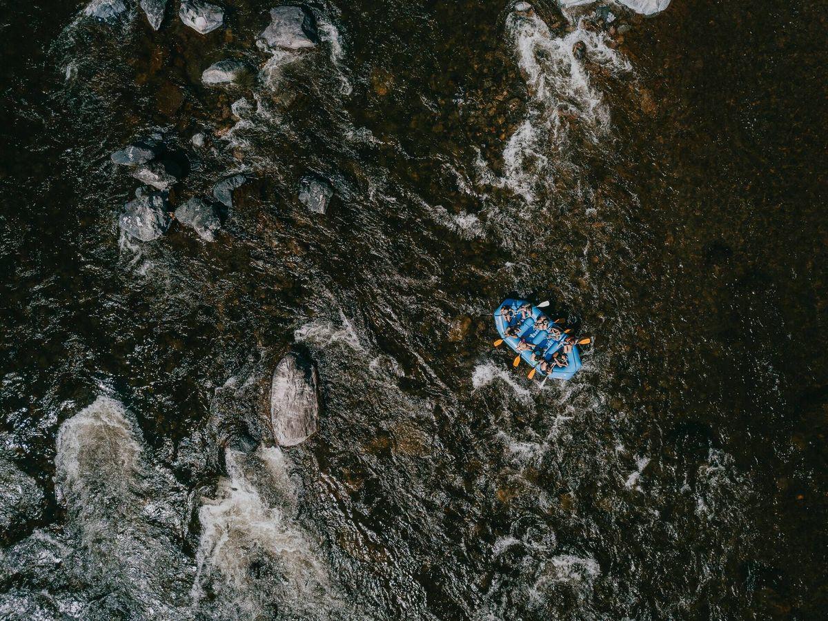 Foto: Se trata de una figura de grandes dimensiones y color marrón (Unsplash)
