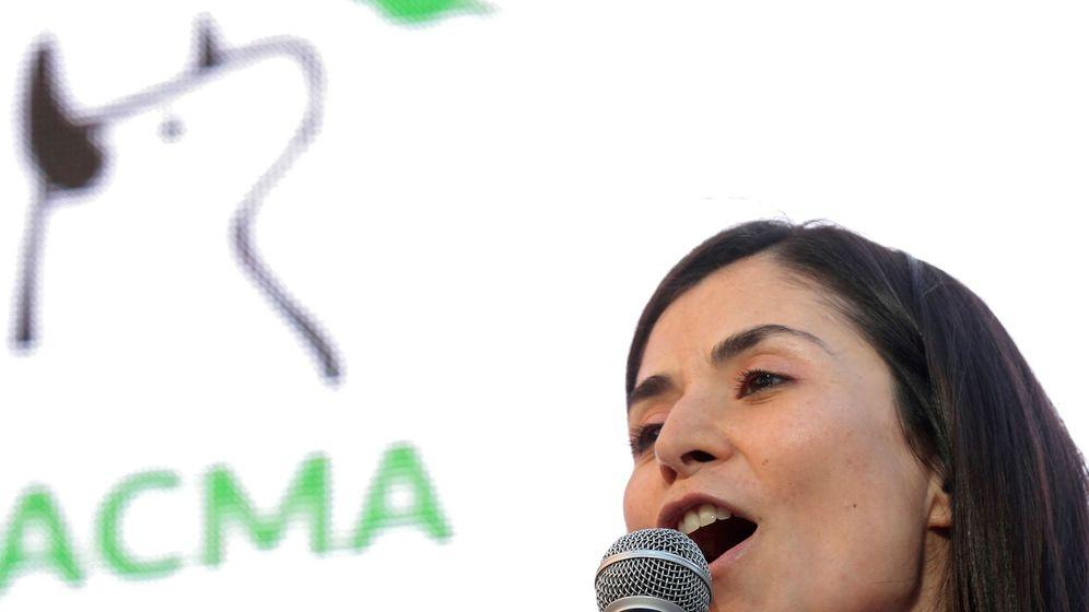 Foto: Acto electoral de cierre de campaña de Pacma en las elecciones del 28 de abril. (Efe)