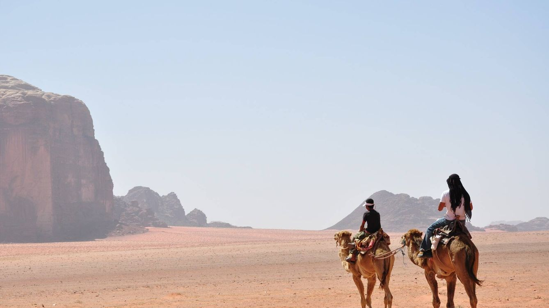 Encuentran unos camellos tallados en una superficie rocosa en Arabia Saudí