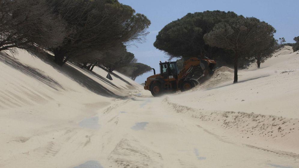 Foto: Retirada de 50.000 metros cúbicos de arena en Valdevaqueros en Tarifa (Cádiz). (EFE)