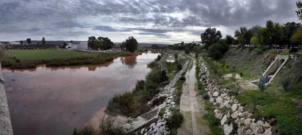 Foto: Imagen del río Guadalquivir a su paso por Mengíbar (Jaén). (EFE)