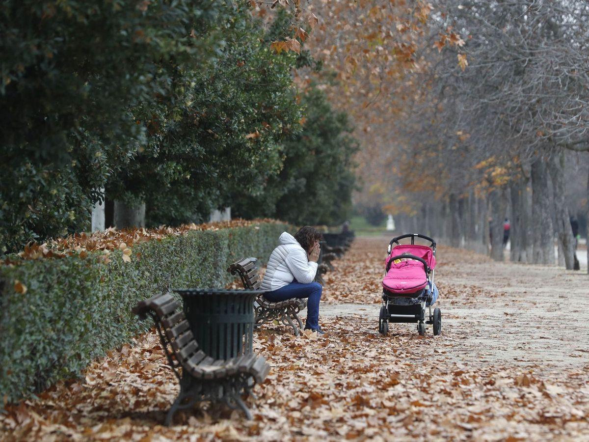 Foto: Parque del Retiro (Madrid). Foto: EFE J.J. Guillén