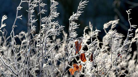 Tiempo frío en Polonia