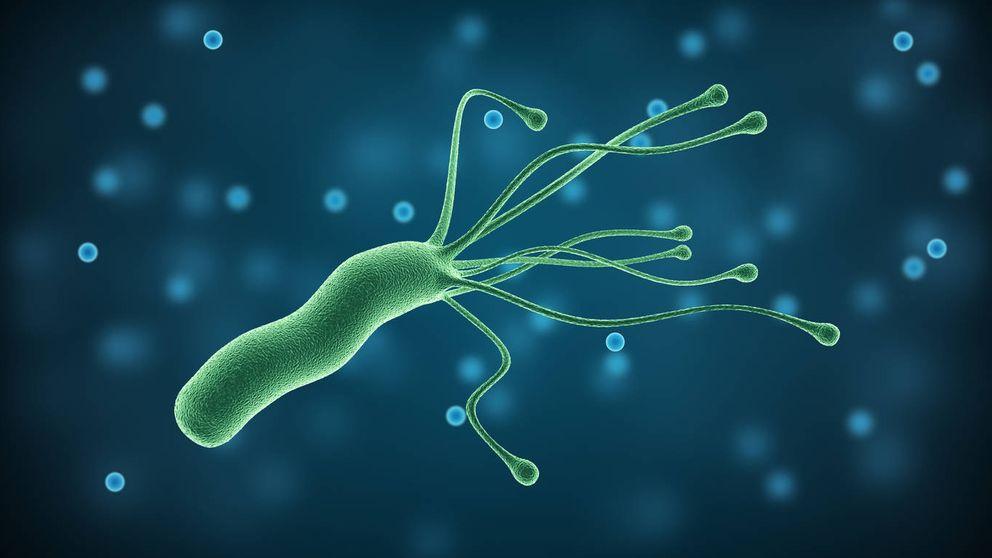Descubren (al fin) por qué la Helicobacter pylori provoca cáncer gástrico