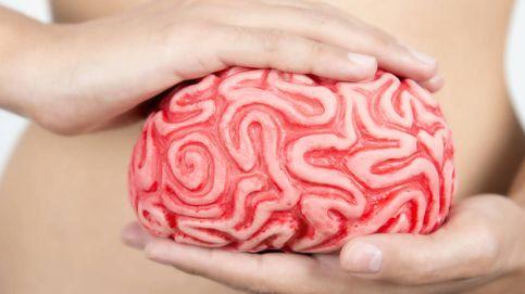 Depresión, serotonina y microbiota, la relación entre ellos