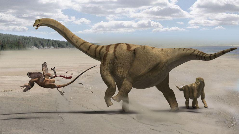 Reptiles gigantes: las últimas especies de dinosaurios descubiertas en el mundo