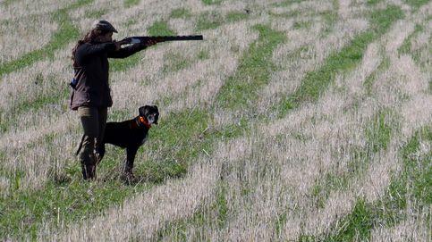 Las cifras de accidentes de caza con arma de fuego en España: 31 muertos en seis años