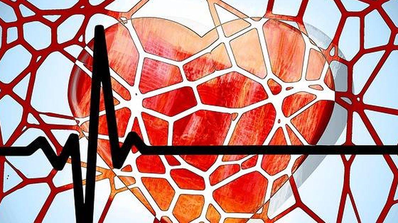 Día Mundial del Corazón. (Pexels)