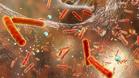 Las infecciones, relacionadas con los desórdenes alimentarios en adolescentes