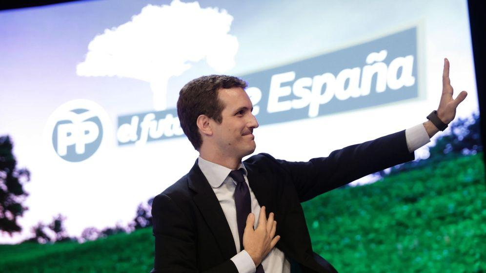 Foto: El nuevo presidente del PP, Pablo Casado. (EFE)