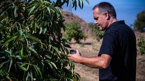 La finca experimental que lleva 60 años revolucionando la agricultura en España