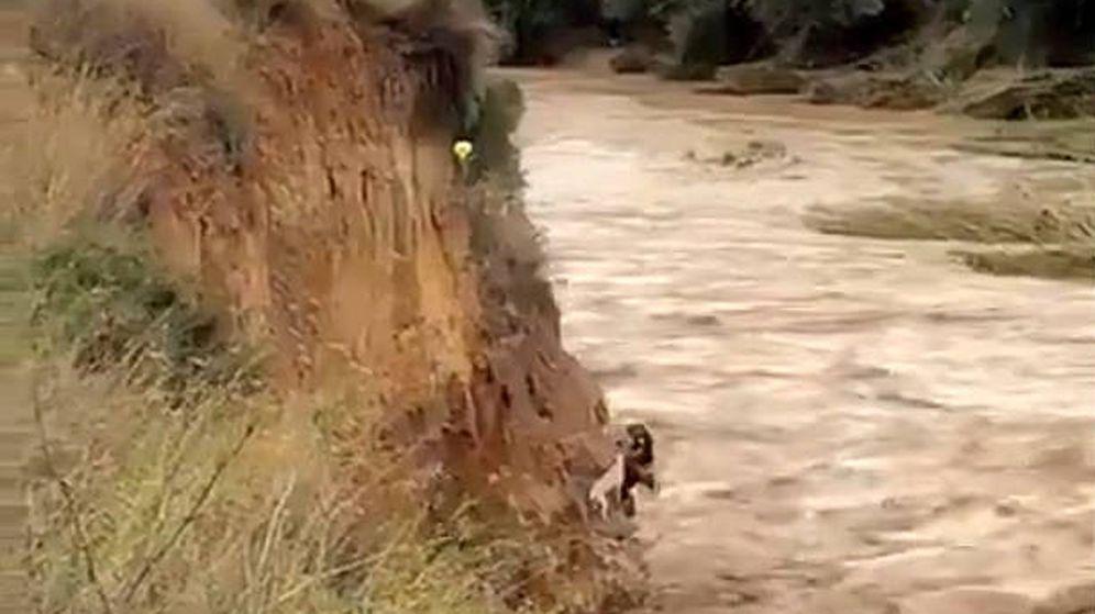 Foto: Los dos agentes de la Guardia Civil se jugaron la vida para llegar hasta el perro (Foto: Twitter)