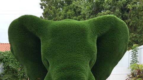 La nueva jardinería: animales de tamaño real