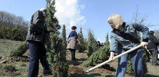 Post de Filipinas obligará a todos los estudiantes a plantar 10 árboles si quieren graduarse