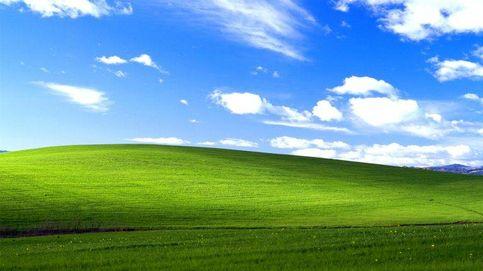 La curiosa historia de la foto más vista del mundo: el campo verde de Windows