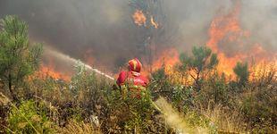 Post de Incendio en el centro de Portugal: fuego controlado al 85% y una veintena de heridos