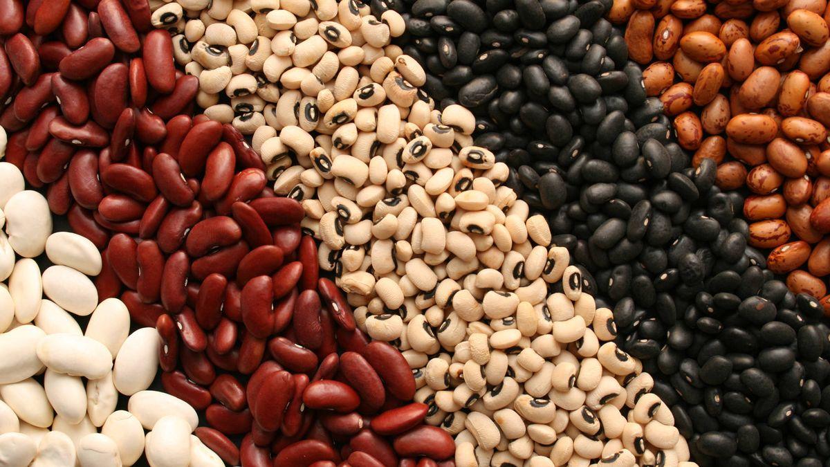Nutrientes: Los frijoles, uno de los alimentos más antiguos de la historia